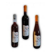 Vinho Verde Quinta Rodelo Velho
